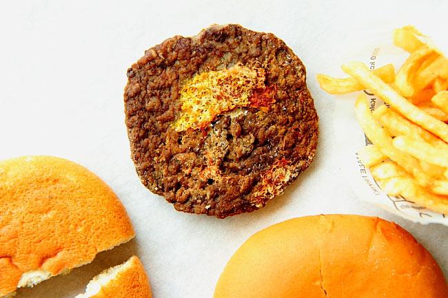 Hamburger and Fries VII_06
