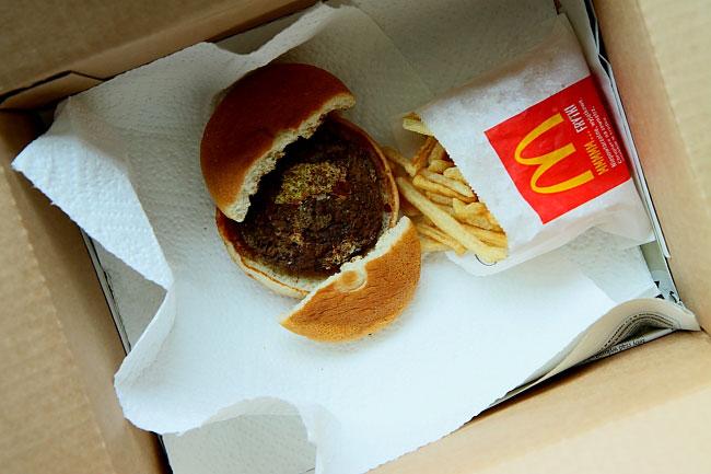 Hamburger and Fries Project 8_01