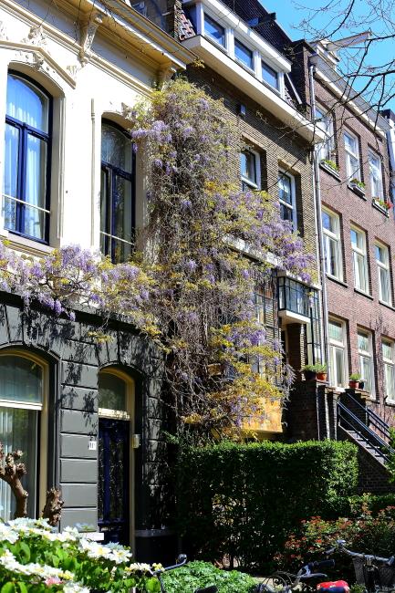 Amsterdam L_165