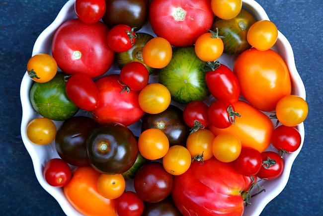 Pomidorowa L_01