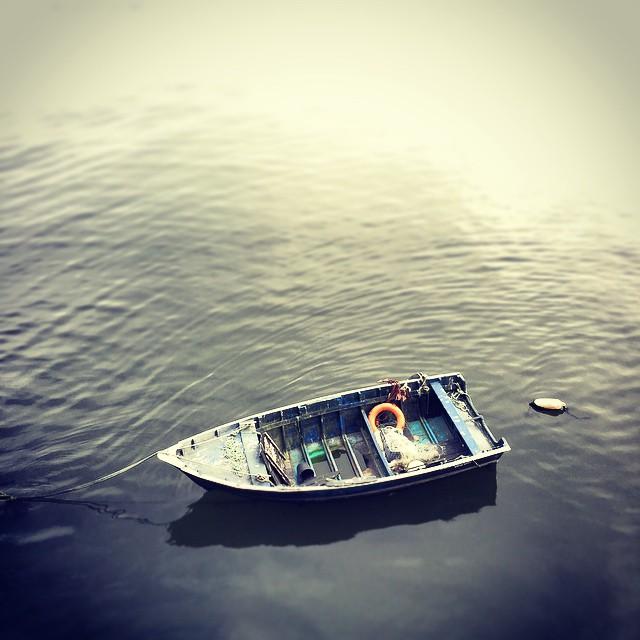 Bacalhau 20
