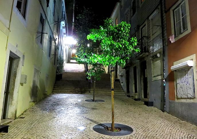 Lizbona L_101