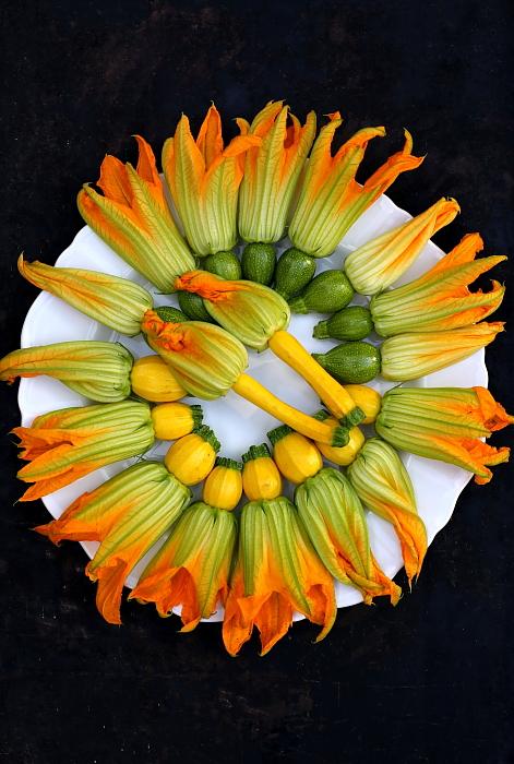 Kwiaty cukinii z jaglanka L_00