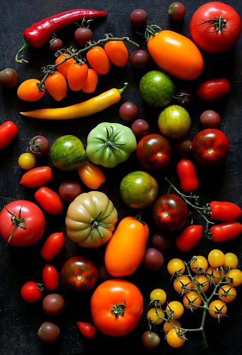 Pomidory z mieta L_02