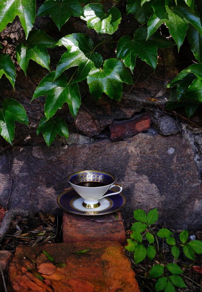 Baskijski sernik z malinami