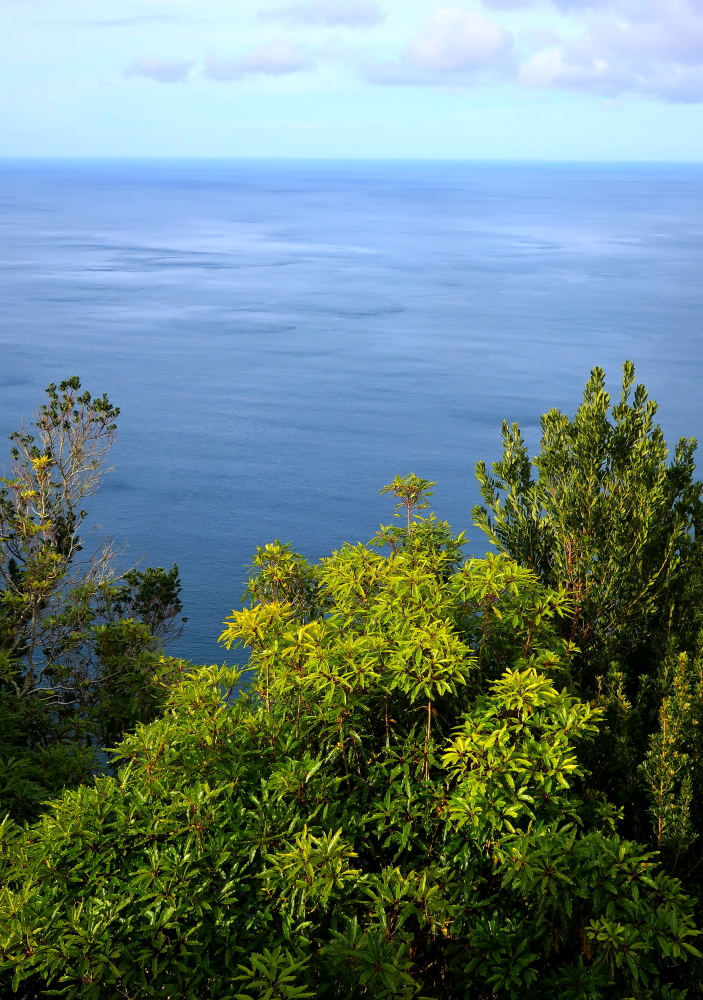 Trekking na Azorach