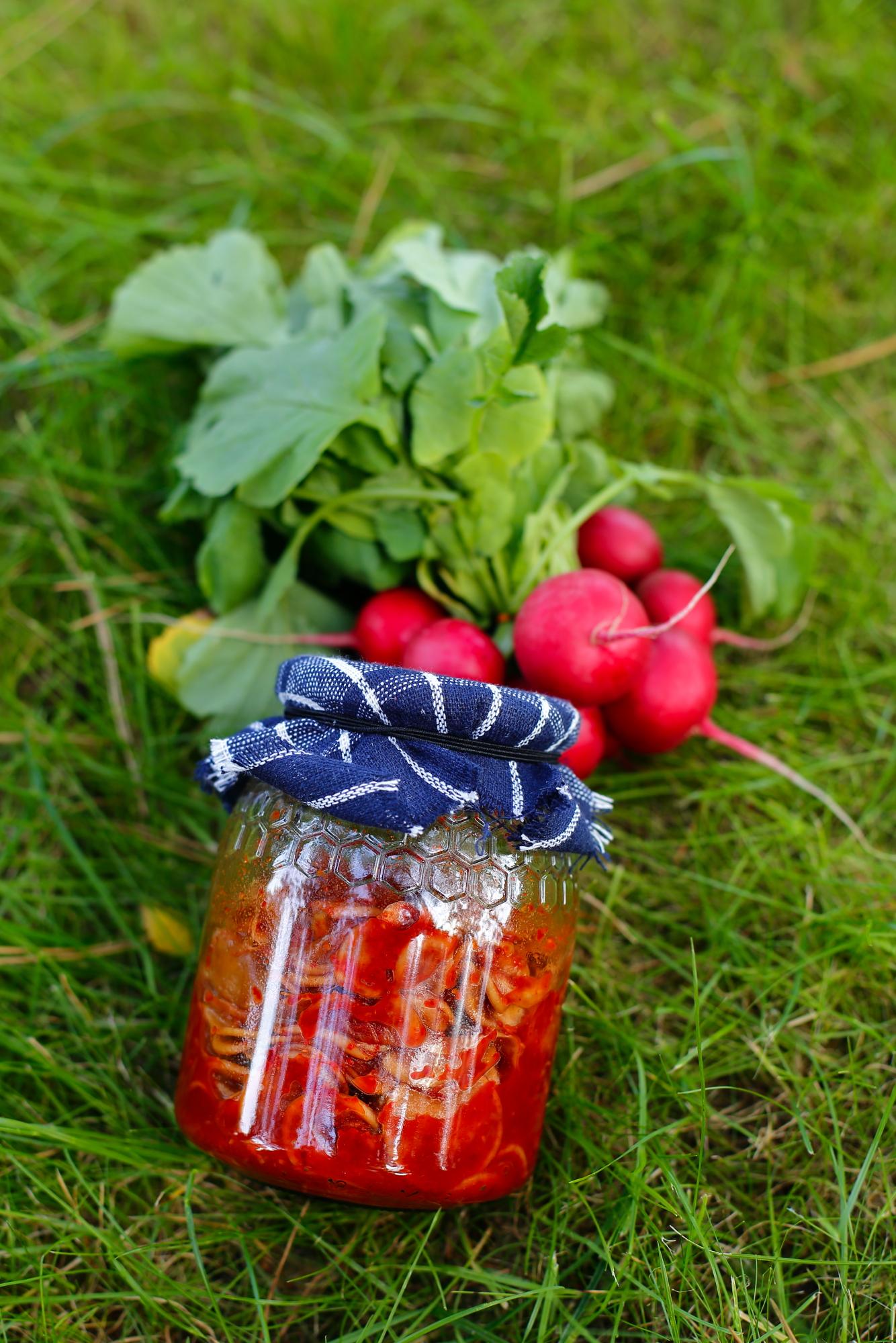 Kimchi z rzodkiewki