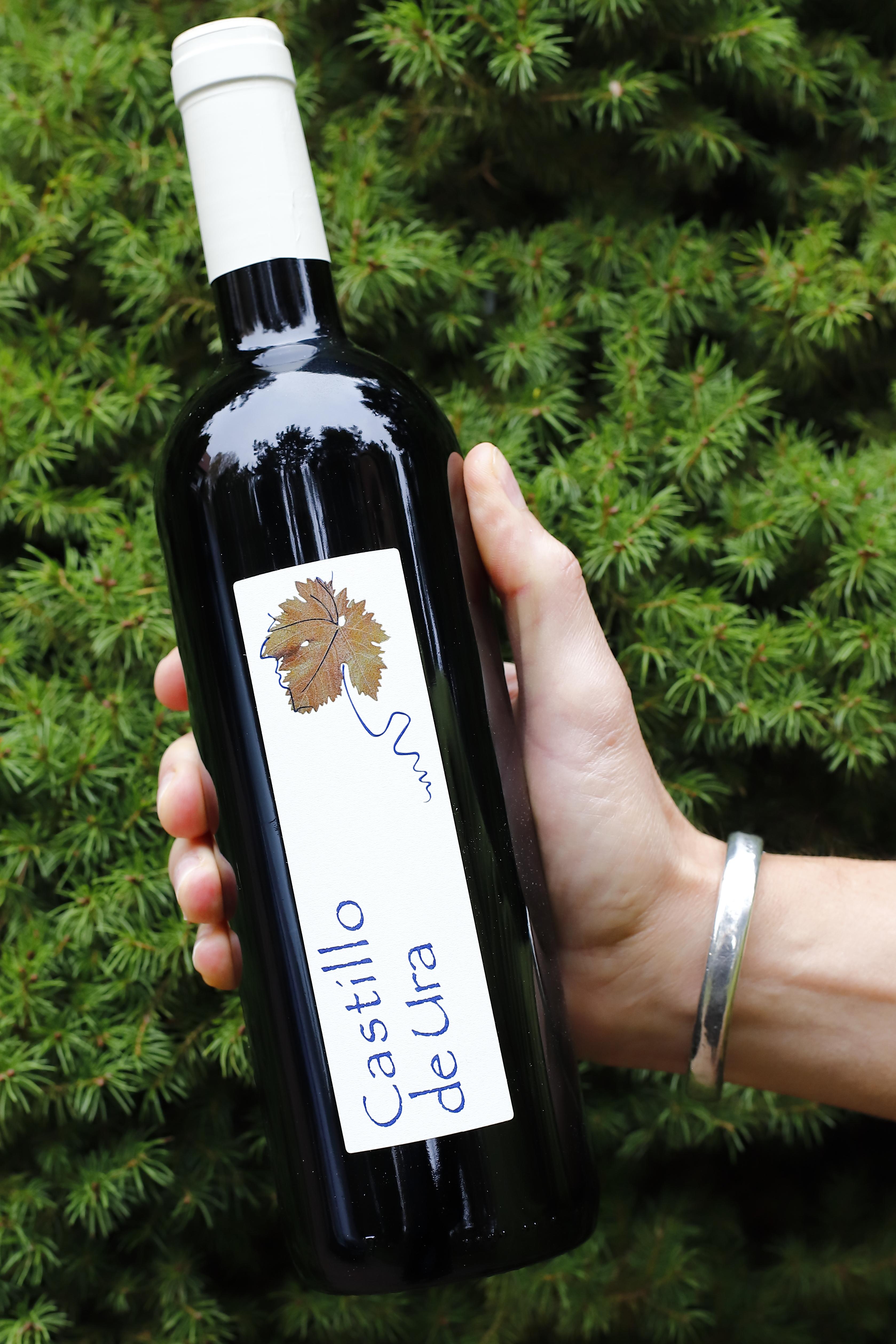 Wina hiszpańskie – Castilla y León