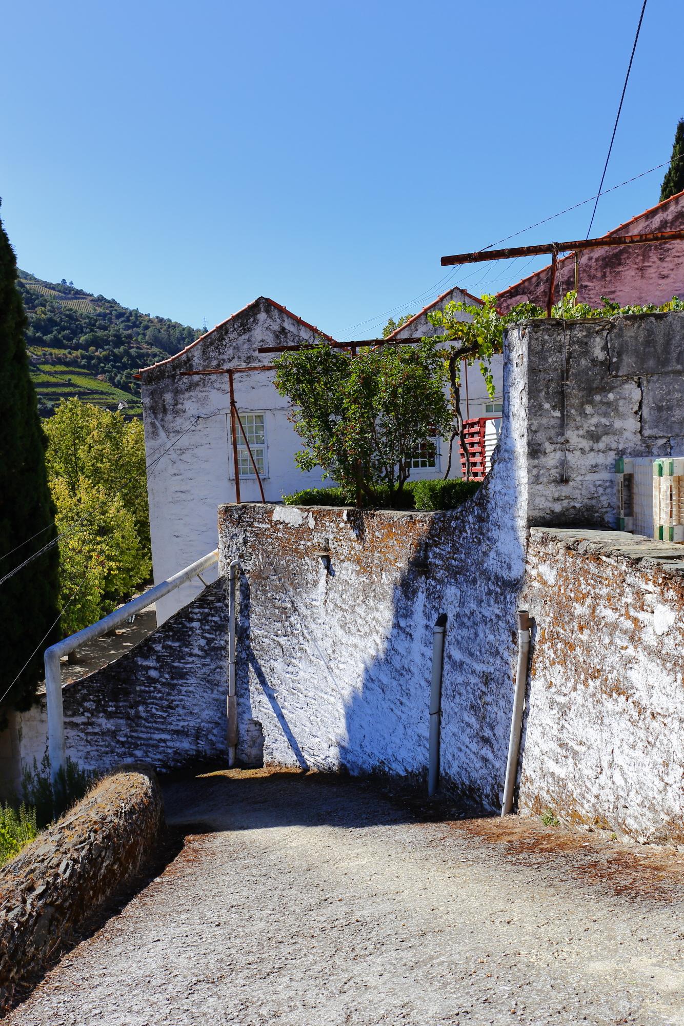 Quinta da Foz to jedna z najciekawszych winnic w Piñhao